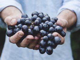 5 סוגי ענבים שלא הכרתם